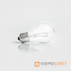 Лампа накаливания 60Вт 24В Е27